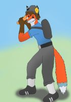 Request from James-Foxtaur by Setup56