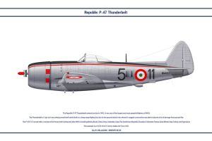 P-47 Italy 1 by WS-Clave