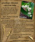 Lycanomicon: Lilly of the Valley, Werewolf Attract by Nashoba-Hostina