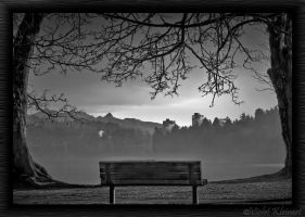 Foggy Sunrise BW by Violet-Kleinert