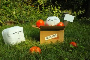 Tomato Box Fairy Appears Ver2 by MadteatimE
