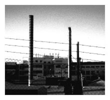 Our Auschwitz by theodamus