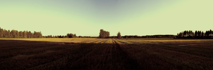 into the great wide open by nisma