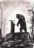 Gandalf and Beorn by drawra