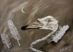 Experiment with relief texture - swan skull by Wolverica