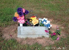 Pink flowers for Papa by Tiffannie