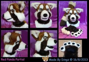 Red Panda Looking For a Home (SOLD) by Dingz