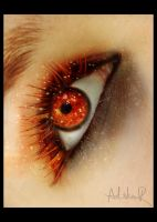 the fire in your eye by ad-shor