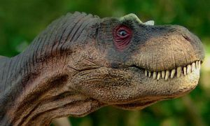 Daspletosaurus profile by Gorgosaurus