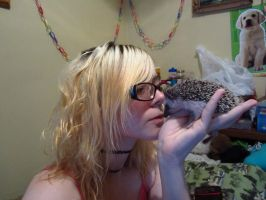 Hedgie Kisses by cadillacphunque