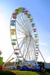 Go Round in Circles by bluemangoimages