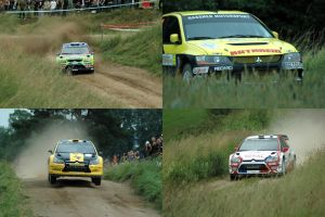 Rally Poland 2009 by MaulerMech