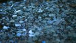 Shards by unenglishable