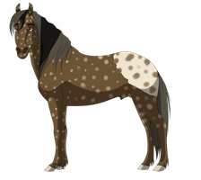 Stallion adopt 1 CLOSED by petshop101