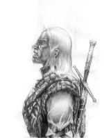 Geralt, The Witcher by Cyberborg
