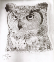 Horned Owl by pandaloverlol