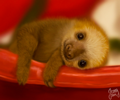 Baby Sloth by Octoberia