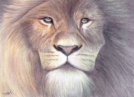Aslan Drawing by Narniakid