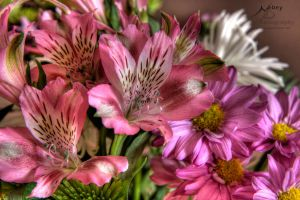 HDR Flower 1 by Nebey