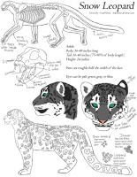 Snow Leopard Tutorial by LadyNilstria