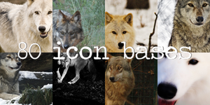 Wolf Icon Bases by princessloser