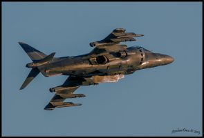 Evening Harrier Miramar  2012 by AirshowDave