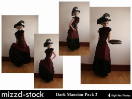 Dark Mansion Pack 2 by mizzd-stock