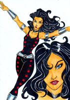 Teen Titans A-Z : Donna Troy by kidmarvelj