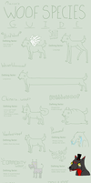 Guide To DA Woofs by StapledSlut