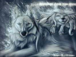 Brothers of snow by light-askha