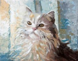 My cat by annya9