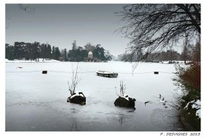 Daumesnil on ice by bracketting94