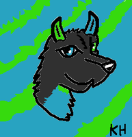 For XxAceFighterxX by HungerGamesTribute45