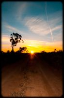 Bush Sunset by tspargo-photography