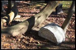 Hartsdale Pet Cemetery 2 by Vamppy