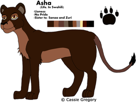 Asha Reference by The-Smile-Giver