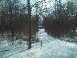 snow path by AriaGrill