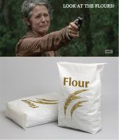 The Walking Dead - Look at the Flours by codebreaker2001