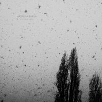 Snow thoughts... by Madalina-Barna