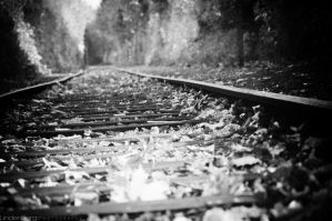 Railways by lindenberg
