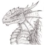 Dragon Profile 1 - War-Torn by Igglebock