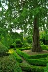 Levens Hall 20 by Forestina-Fotos
