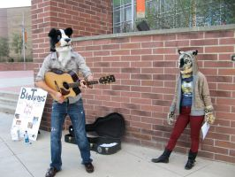 Busking by IndigoWolf13