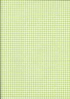 Green Gingham by BelovedStock