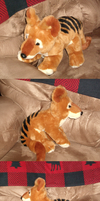 The elusive thylacine playing in a chair by Skeleion