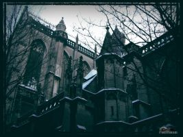 cold cathedral by DeathBirdModel