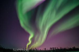 Fairbanks, Alaska Aurora 3/18/15 by AKNorthPolar