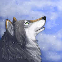 Winter ID by TheWolfWithinMe