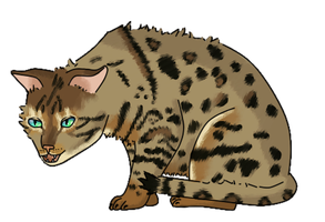 Bengal by DeathPhantom