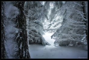 Entry to a Frozen World by FlorentCourty